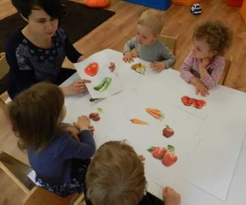 Projekt: Pomidor